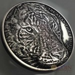 Tokelau Asian Tiger High Relief $1 Silver coin 1 oz Antique Finish 2013