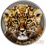 "Burundi Baby Leopard ""African Baby Big Five"" series Colored High Relief Silver coin 5,000 Francs 1 oz Antique Finish 2014"