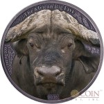 Burkina Faso AFRICAN BUFFALO series THE AFRICAN BIG FIVE 1000 Francs Silver coin 2016 High relief Handmade Antique Finish Colored 1 oz