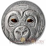 Cameroon Baby Cross River Gorilla Real Eye Effect Silver Coin 2013 Antique Finish 1000 Francs 1 oz