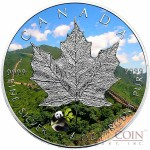 Canada PANDA PRIVY Maple Leaf Canadian $5 Silver coin 2016 Special edition 1 oz