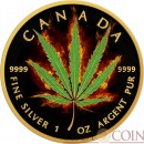 Canada CANNABIS SATIVA CANADIAN MAPLE LEAF Series BURNING MARIJUANA $5 Silver Coin 2016 Black Ruthenium & Gold Plated 1 oz
