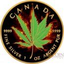Canada HYBRID INDICA SATIVA Series BURNING MARIJUANA $5 Silver Coin CANADIAN MAPLE LEAF 2017 Black Ruthenium & Gold Plated 1 oz