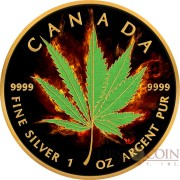 Canada HYBRID INDICA SATIVA Series BURNING MARIJUANA $5 Silver Coin CANADIAN MAPLE LEAF 2017 Black Ruthenium & Gold Plated 1 oz