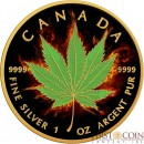 Canada INDICA CANNABIS Series BURNING MARIJUANA $5 Silver Coin CANADIAN MAPLE LEAF 2017 Black Ruthenium & Gold Plated 1 oz