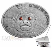Fiji TAMARIN series FASCINATING WILDLIFE Silver Coin $10 Antique finish 2013 High Relief 1 oz