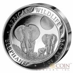 Somalia Elephant Somalian Ultra High Relief Silver Coin 1 oz African Wildlife 2014