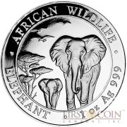 Somalia Elephant 100 Shillings series African Wildlife Silver 1 oz Coin 2015