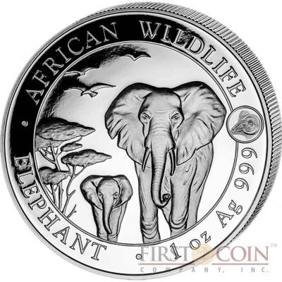 Somalia Elephant 100 Shillings series African Wildlife Silver Coin 1 oz Goat Lunar Year Privy Mark 2015