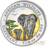 Somalia Elephant Day 100 Shillings series African Wildlife Silver 1 oz Colored Coin 2015