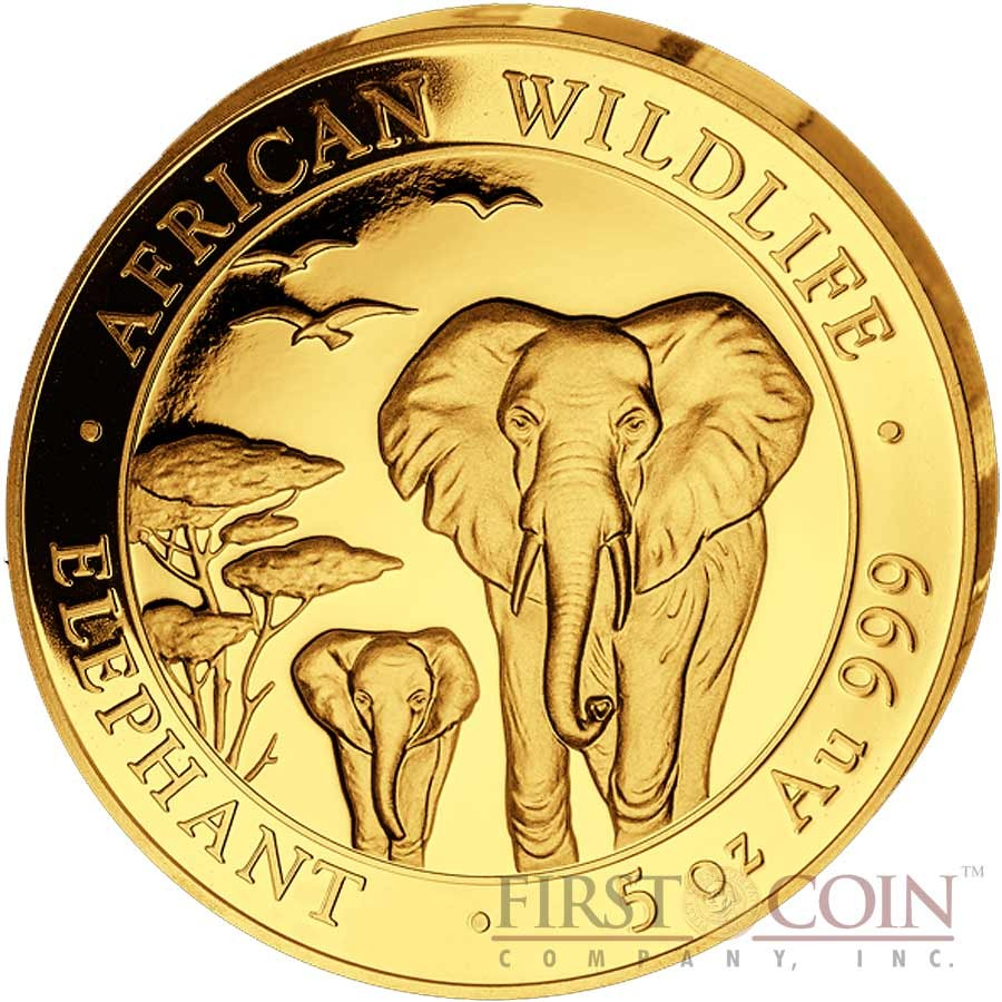 Somalia Elephant 1500 Shillings series African Wildlife Gold 5 oz Coin 2015 Proof
