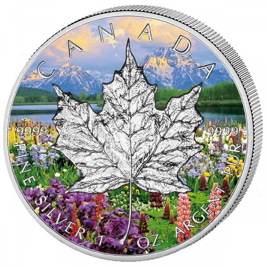 Canada Silver Maple Leaf Four Seasons Colored 4 Four Coin Set 2013