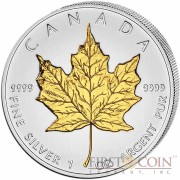 Canada Maple Leaf Canadian $5 Gilded 2013 Silver coin 1 oz