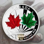 Canada Maple Leaf Forever Series $250 Silver Coin Enamel 2014 Proof 1 Kilo / Kg