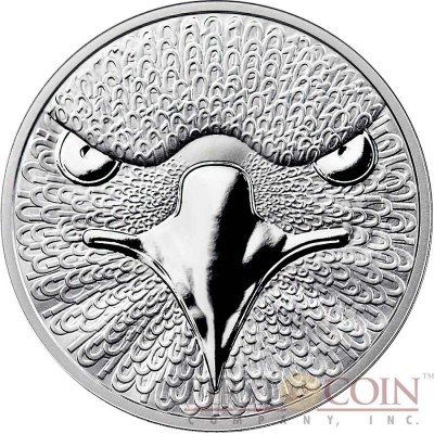 THE BINARY EAGLE - Sol Noctis 1 Cent Bitcoin Series Silver coin Hologram 2014 Proof 1 oz