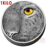 Congo Kilo AMUR LEOPARD PANTHERA PARDUS ORIENTALIS series NATURE'S EYES Silver coin 10,000 Francs Antique finish 2016 High Relief 1 KILO