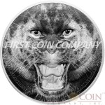 Tanzania THE BLACK PANTHER series RARE WILDLIFE 1500 Shillings Silver coin 2016 Proof 2 oz