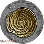 Niue Island NUMMULITES Series EVOLUTION OF EARTH Silver Coin $2 Ruthenium and Gold plated 2017 Ultra High Relief 2 oz