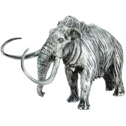 WOOLLY MAMMOTH series THE LOST WORLD 3D Solid Silver Statue Antique finish 8.7 oz