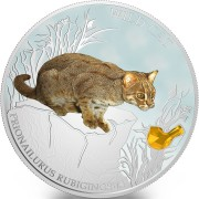 Fiji WILD CAT - PRIONAILURUS RUBIGINOSUS $2 Silver Coin 2014 Gem inlay Proof 1 oz