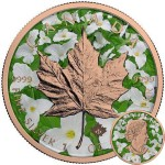 Canada CANADIAN FLOWERS Canadian Maple Leaf series THEMATIC DESIGN $5 Silver Coin 2017 Rose Gold plated 1 oz