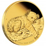 Australia AUSTRALIAN KOALA $5 Gold Coin 2012 Proof 1/25 oz