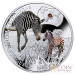 "Niue Island Grevy's Zebra Silver Coin ""SOS to the World – Endangered Animal Species"" Series $1 Colored 2014 Proof with Swarovski Elements"
