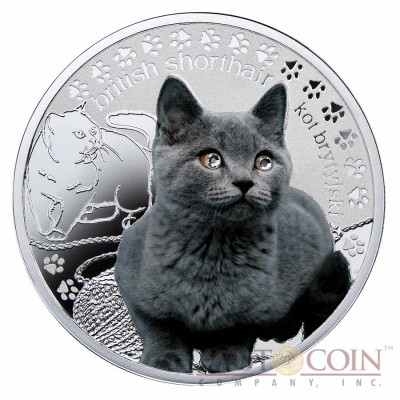 Niue British Shorthair Cat Silver Coin Man's best friends - Cats Series $1 Colored 2014 Proof with Swarovski