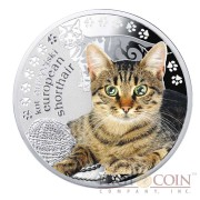 Niue European Shorthair Cat Silver Coin Man's best friends - Cats Series $1 Colored 2014 Proof with Swarovski