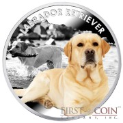 "Niue Labrador Retriever Silver Coin ""Dogs - Man's best friends"" Series $1 Colored 2014 Proof"
