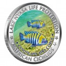 "Copper Colored Coin CYNOTILAPIA AFRA COBUE 2010 ""African Cichlids"" Series, Malawi"