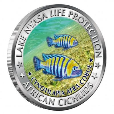 Медная цветная монета ТИЛАПИЯ АФРИКАНСКАЯ 2010 серии «Африканские Цихлиды», Малави