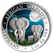 Somalia Elephant African Wildlife Series Silver coin 2014 Night scene 1oz