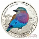 "Burkina Faso  Lilac Brested Roller  ""Colorfull Birds"" series 500 Francs Silver Coin 2013 Colored"