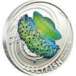 "Silver Coin COTYLORHIZA TUBERCULATA 2011 ""Jelly Fish"" Series"
