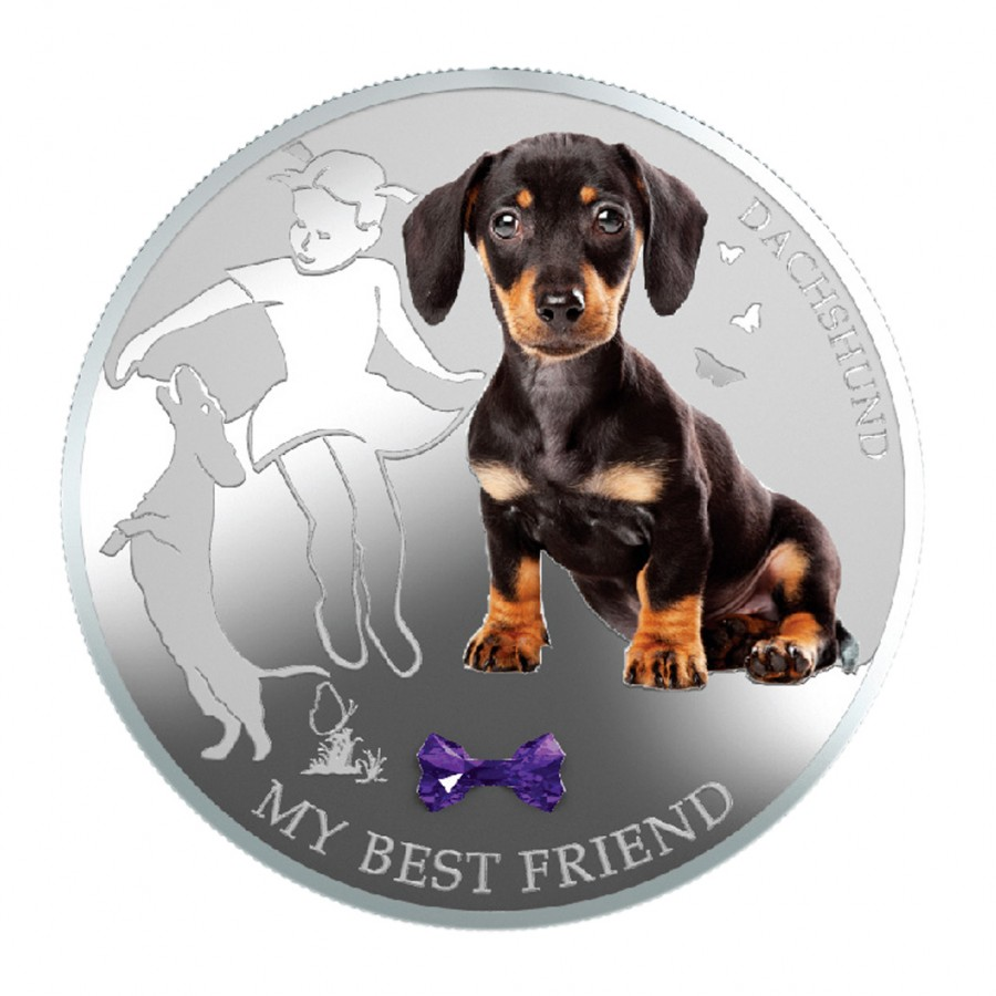 Silver Coin My Best Friend Dachshund 2013 Quot Dogs And Cats