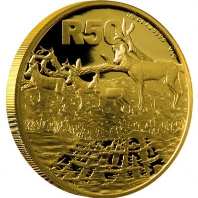 Золотая Монета АФРИКАНСКИЕ РАСКРАШЕННЫЕ ВОЛКИ ( ГИЕНОВЫЕ СОБАКИ ) 2012 - 1/2 унции