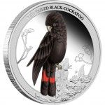 """Silver Coin RED-TAILED BLACK-COCKATOO 2013 """"Birds of Australia"""" Series  - 1/2 oz, Proof"""
