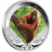 "Silver Coin ORANGUTAN 2011 ""Wildlife in Need"" Series"