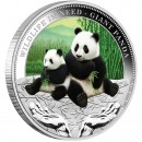 "Silver Coin PANDA 2011 ""Wildlife in Need"" Series"
