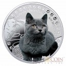 "Niue British Shorthair Cat Silver Coin ""Man's best friends - Cats"" Series $1 Colored 2014 Proof with Swarovski"