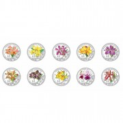 """The Grandeur of Heritage Orchids of Singapore"" Series 2011 Ten Silver Coin Set"